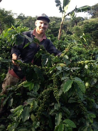 Young man smiling next to a coffee plant