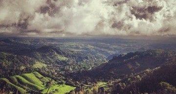 Beautiful coffee grows in beautiful places. Photo: @fincasantateresa