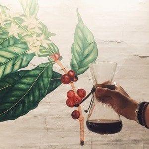 brewed chemex coffee shop