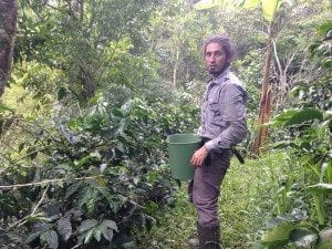 Coffee farmer next to coffee plants