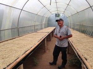 Coffee lots