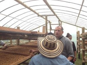 Coffee drying greenhouse