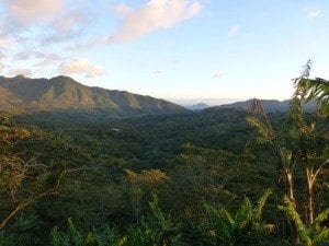 Nicaragua's spectacular mountainous landscape. Credit: Falcon Coffees