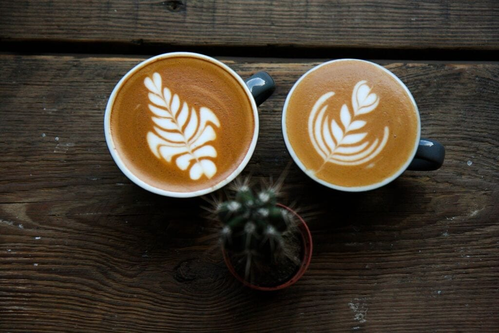 specialty coffee in portugal without sugar please perfect daily grind