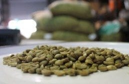 Indonesian Wet Hulled Coffee: Your One-Stop Guide