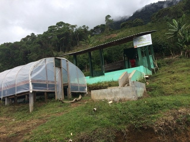 Beneficio San Vicente coffee farm