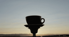 Coffee Life: Three Videos That Remind Us Why Coffee Wins