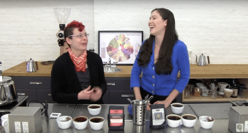 Specialty Coffee Taster's Flavor Wheel: Explained in 3 Videos