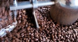 How to Become an Artisan Coffee Roaster: The Basics