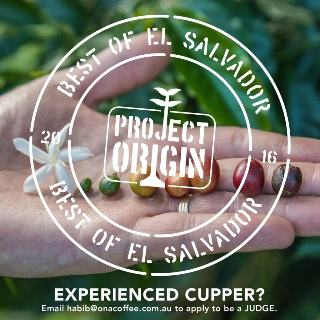 Project Origin best of el salvador