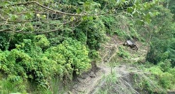 Poor Roads: Are They The Biggest Issue Facing Papua New Guinea's Coffee?