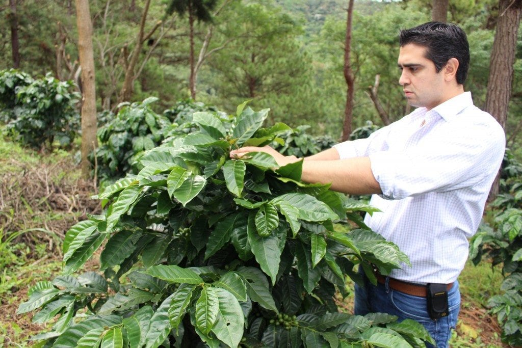 jorge raul rivera coffee farmer
