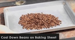 Pop That Coffee: 2 VIDEO Guides to Popcorn Roasting Coffee