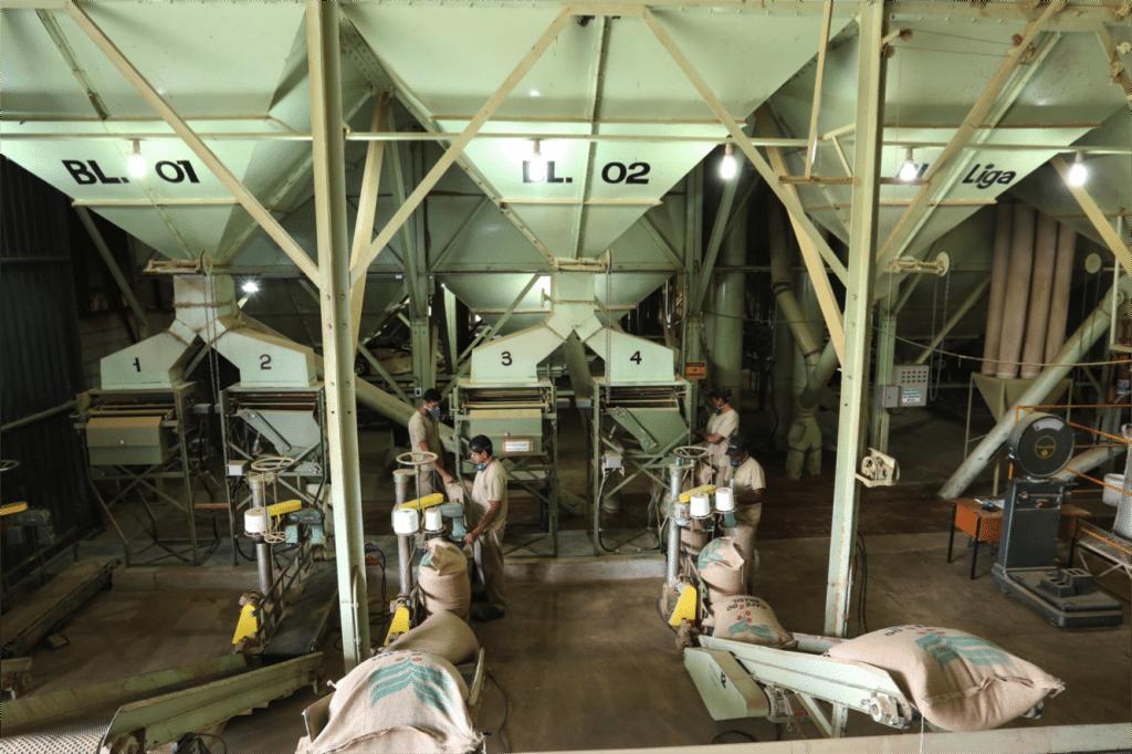 coffee sorting mill in brazil