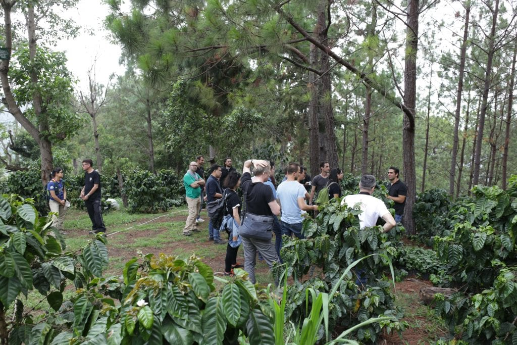 filming movie at el salvadoran coffee farm