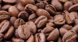 What Stage is Your Roast? A VIDEO Explanation of Coffee Bean Colour Change