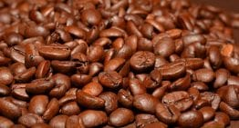 How to Avoid Stale Coffee: A VIDEO Guide