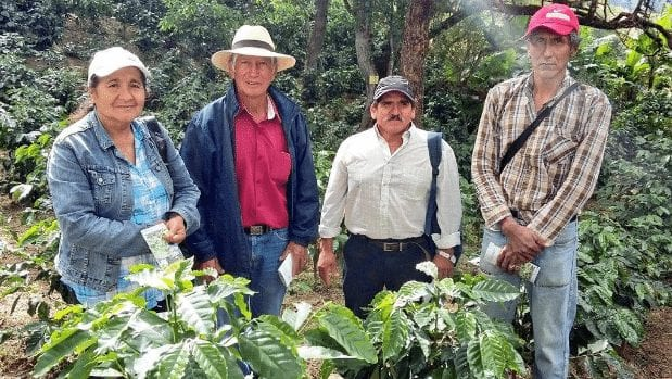 Ecuadorian coffee farmers