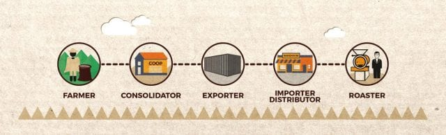The coffee value chain