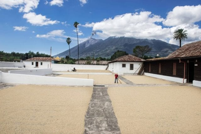 Drying patios in Antigua region