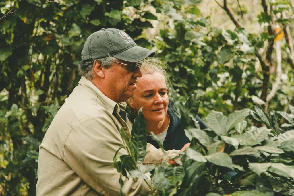 Man and woman look at a coffee plant on a farm