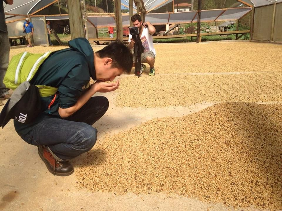 Tetsu Kasuya smells drying coffee at Sitio Retiro do Ipê