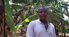 How Ugandan Coffee Farmers Prepare Their Land: A VIDEO Introduction