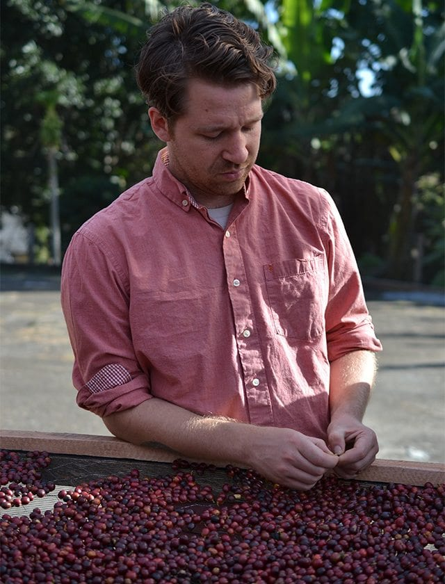 James inspects drying cherries at Pedro Carnielli, Espírito Santo