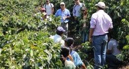 Cómo Donando Tostadoras de Café Podemos Ayudar a Caficultores en Origen – En 1 Vídeo