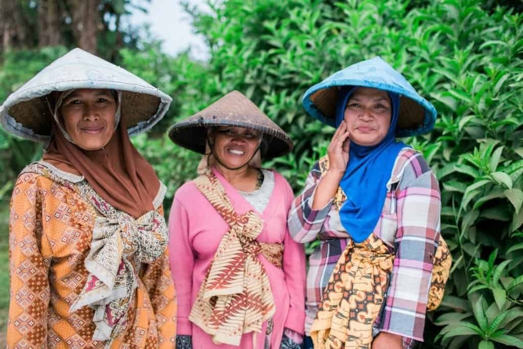 Three female coffee farmers