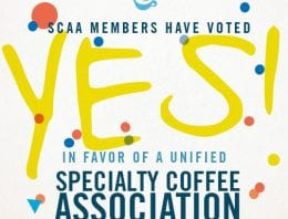Votes In: SCAA/SCAE Unification Goes Ahead