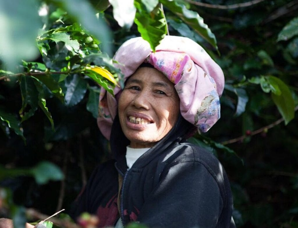 Female Javanese coffee worker
