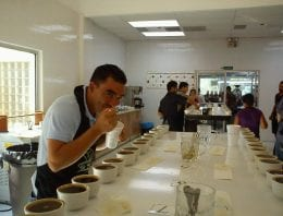 Interview: How Training Cuppers Supports Specialty in Honduras