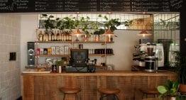 Recorrido por los 5 Mejores Cafés de Medellín
