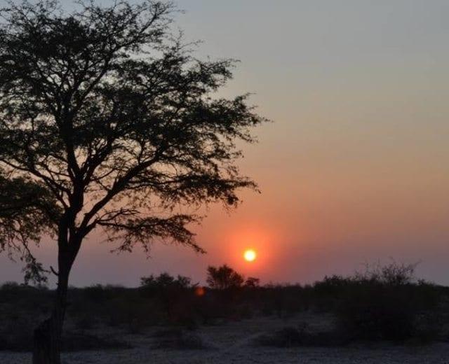 Central Kalahari, Botswana