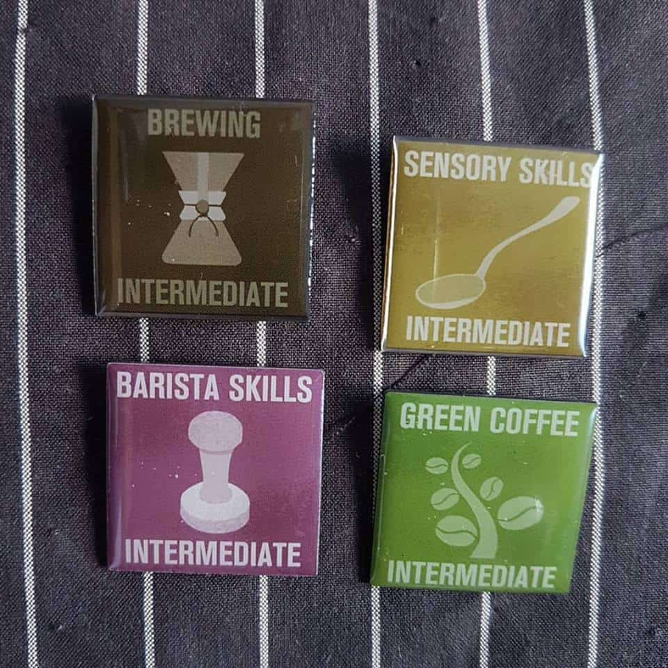 scae badges