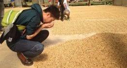 Entrevista con El Campeón del World Brewers Cup, Tetsu Kasuya