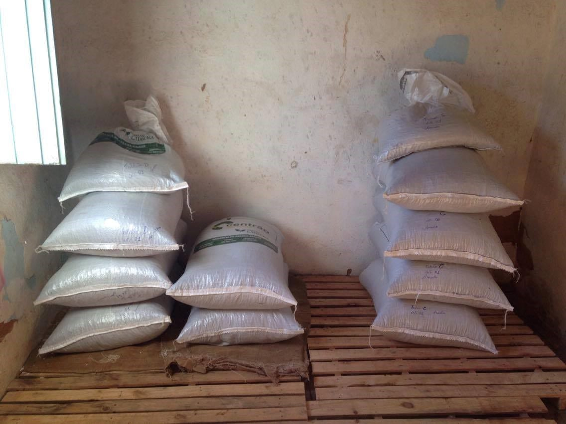 coffee-bags