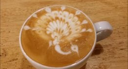 Latte Art VIDEO Guide: How to Pour a Peacock