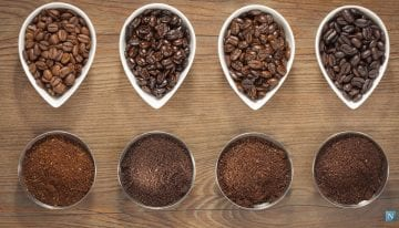 Debunked: Do Light or Dark Roasts Have More Caffeine?
