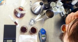 Micro Roasts & Coffee Imports: Introducing Chile's Roasting Scene