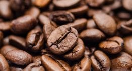 Kapeng Barako: Can This Filipino Coffee Varietal Be Third Wave?