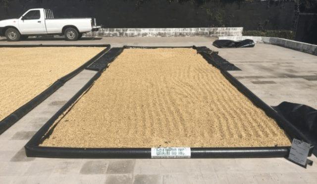 Grain Pro