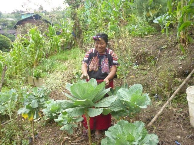 Ixil Woman