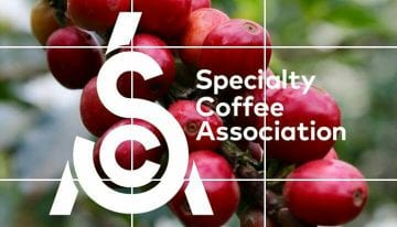 Specialty Coffee Association (SCA) Officially Launched
