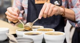 Training Tips: How to Improve Your Coffee Career and/or Business