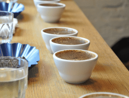 5 Tips for Starting a Career in Coffee