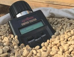 Buyer Insight: How to Deal With Green Bean Defects