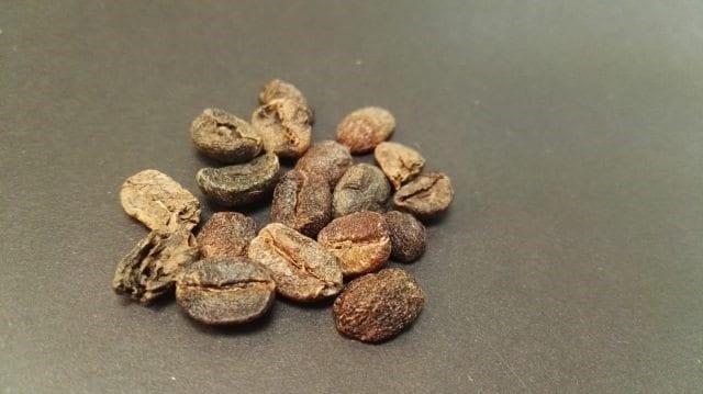 grano de cafe negro