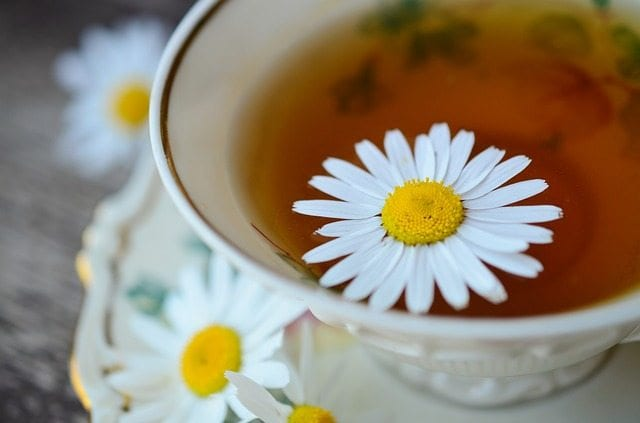 Daisy and Chamomile Tea